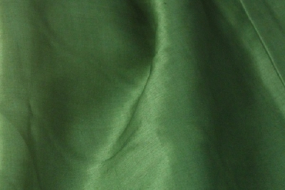Крапива изумрудного цвета